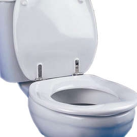 Dania Toilet Seat With Cover