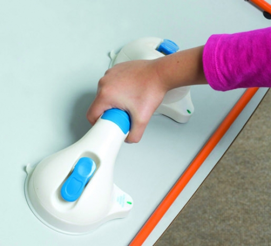 Suction Grab Bar